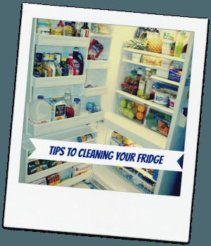 fridge-tips
