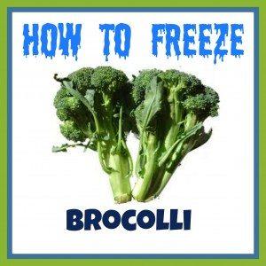 How to Freeze Broccoli
