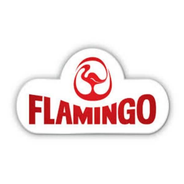 Flamingo Chicken Logo