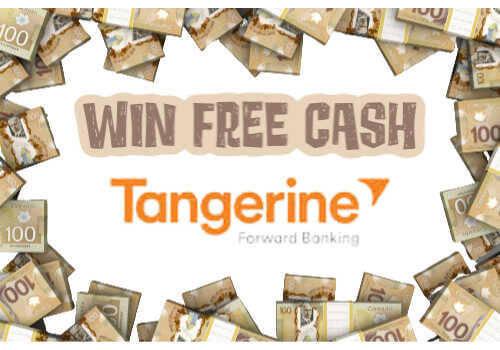 Tangerine Contest Blog