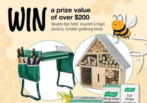Win a Bee Hotel from Avogel on Facebook