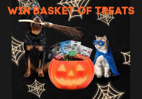 Zoe Canada Contest ~ Win a Basket of Treats