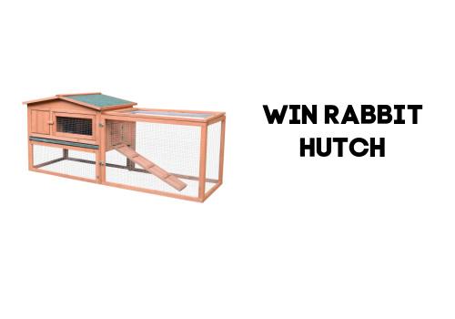 Win a Rabbit Hutch from AosomA